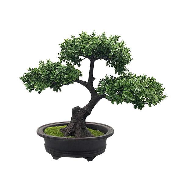 ARBOL Bonsai 25cm H